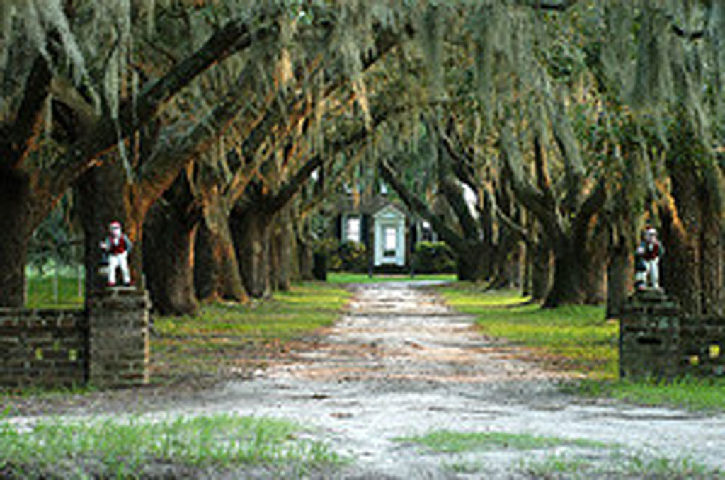 Coosaw Plantation Chisolm Beaufort County South