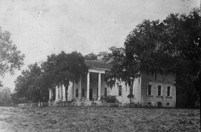 Hampton Plantation - McClellanville, Charleston County