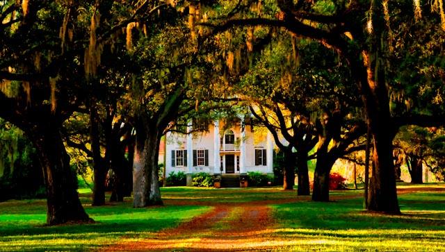 Best Southern Plantation Tours