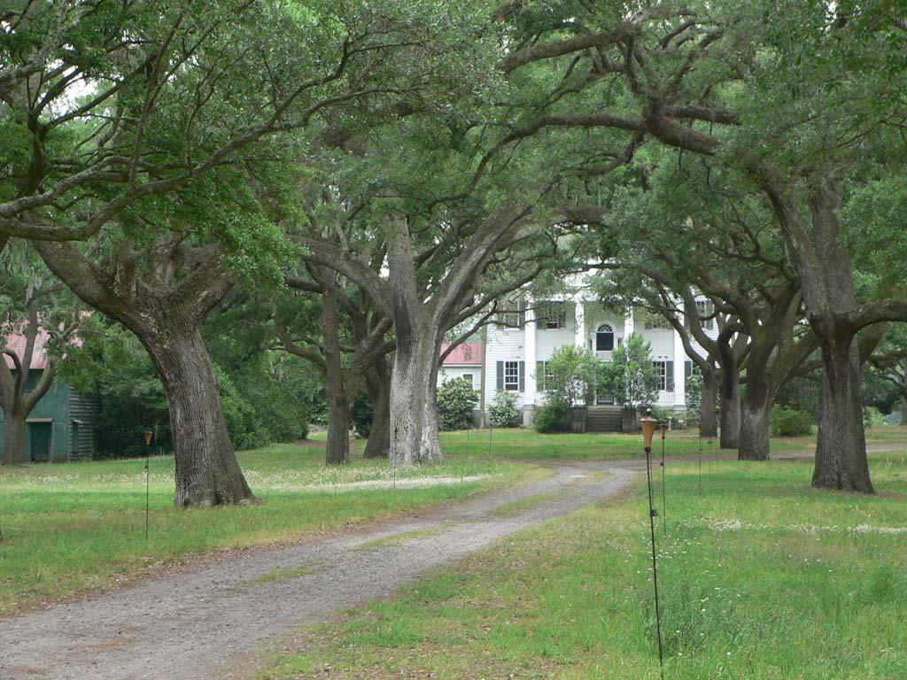 Mcleod plantation james island charleston county south for South carolina plantations for sale