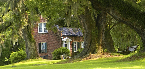 Georgetown Plantation Tours