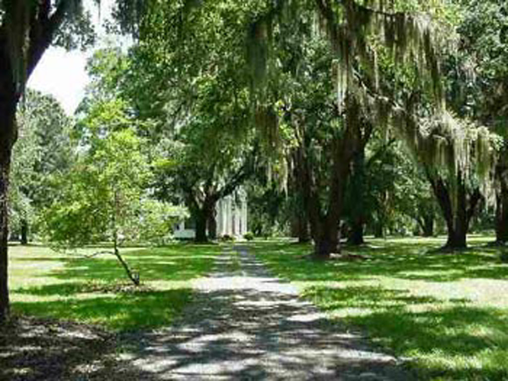 Millbrook Plantation - Georgetown, Georgetown County, South