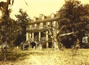 Wedge Plantation Mcclellanville Charleston And