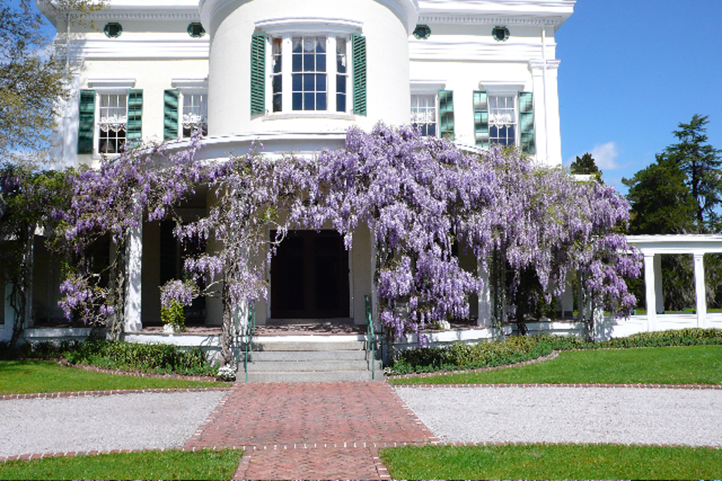 Places That Are Straight Out Of Fairy Tales further 2313488418 likewise The Notebook together with charlestonfootprints likewise My Dream House. on old houses charleston south carolina
